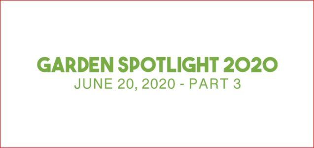 Saturday – Garden Spotlight – Part 3
