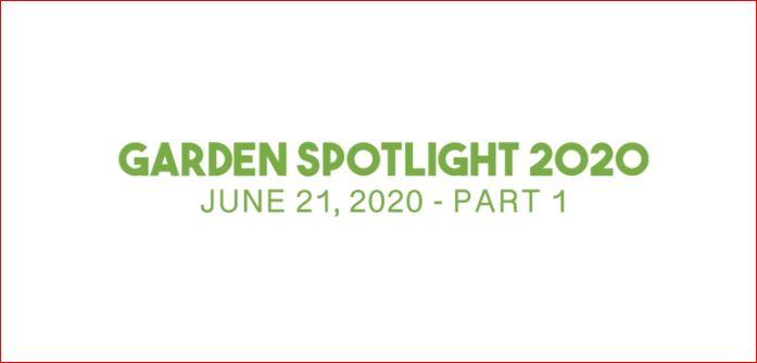 Sunday – Garden Spotlight – Part 1