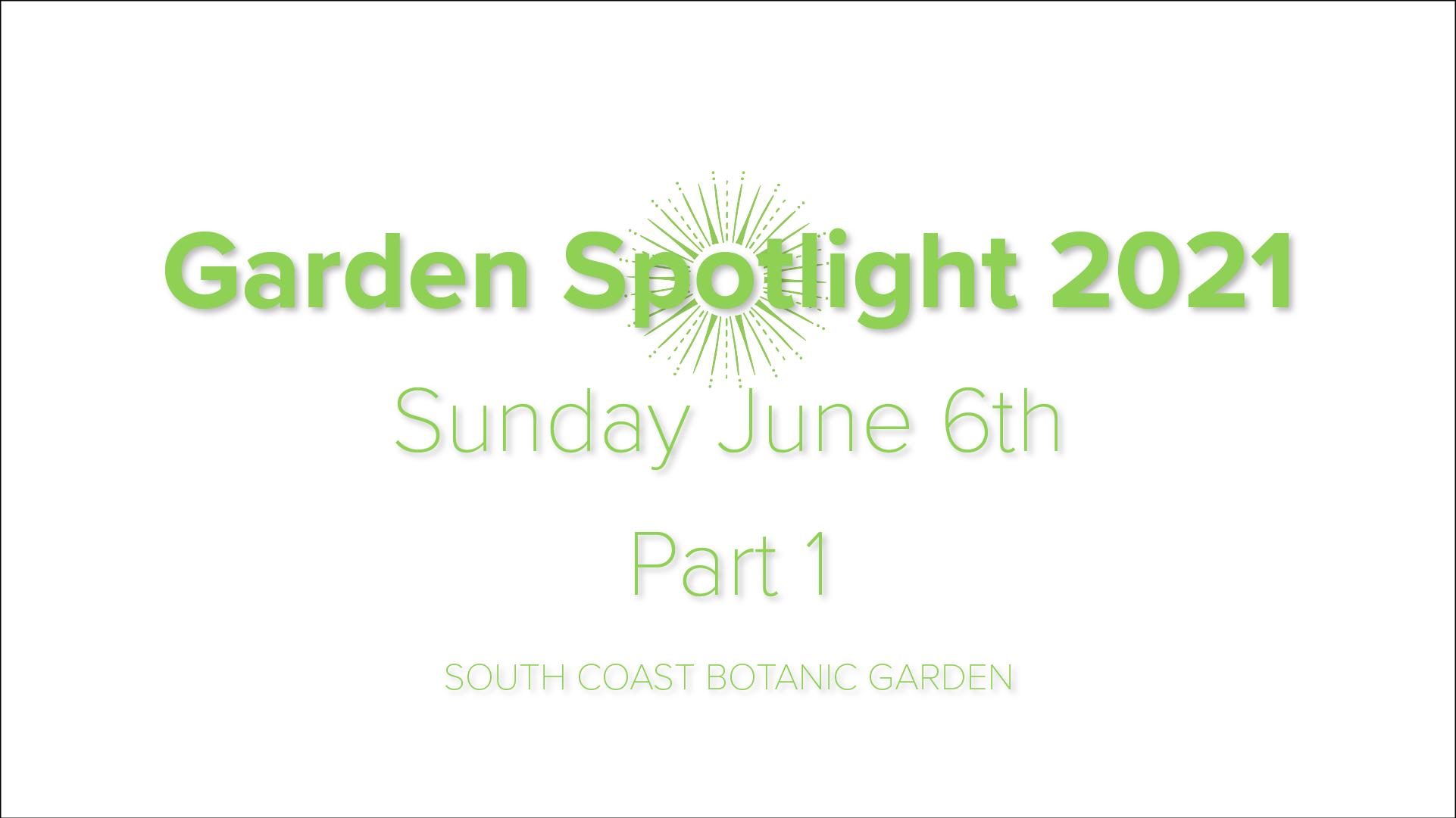Sunday – Garden Spotlight 2021 – Part 1